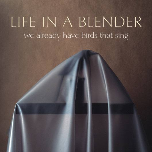 Life in a Blender's  'We Already Have Birds that Sing' produced by Kenny Siegal - nominated for Best Eclectic EP